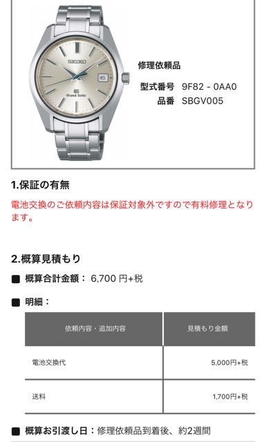 watch-battery-change-3