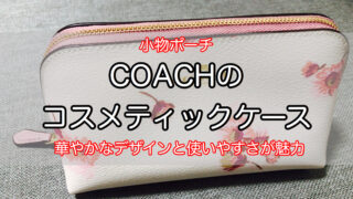 coach-cosmetic-case-1