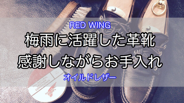 rainy-season-red-wing-1