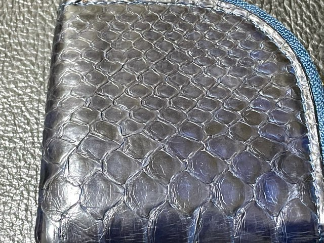 aging-python-leather-8