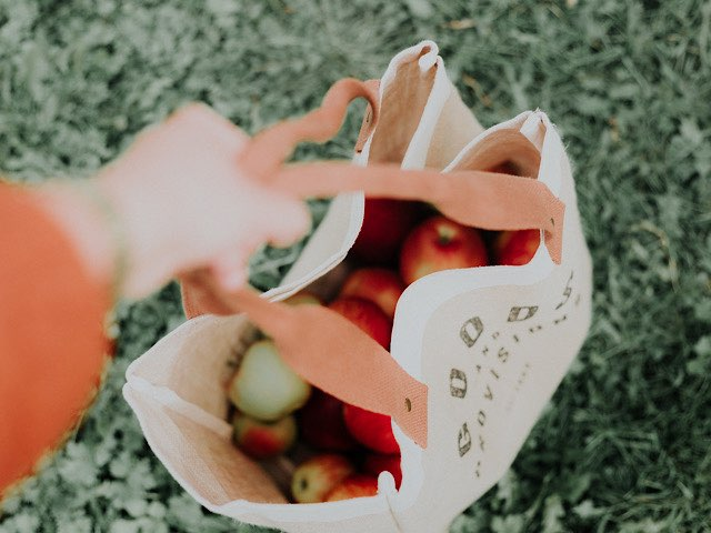 recommend-eco-bag-5
