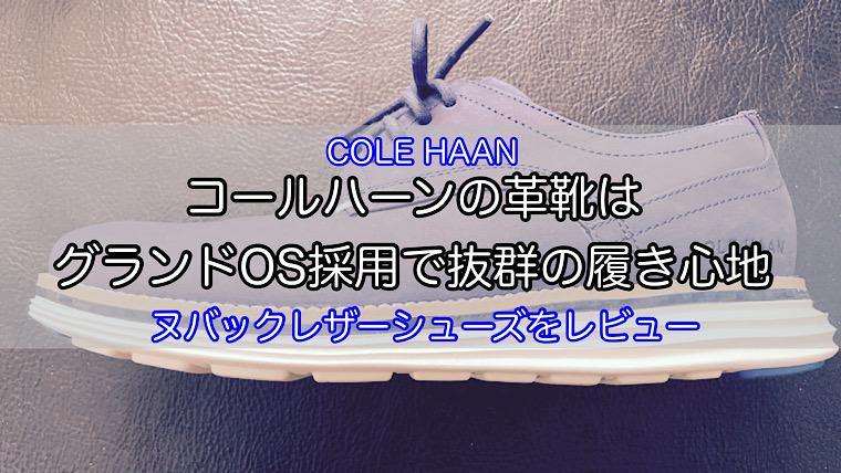 cole-haan-nubuck-shoes-1