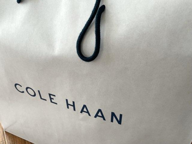 cole-haan-nubuck-shoes-39