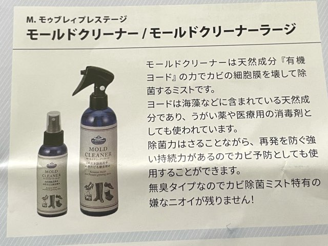 mold-cleaner-7