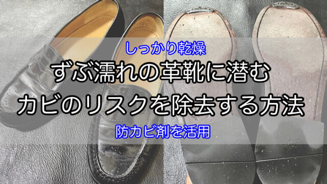 protect-mold-wet-shoes-1