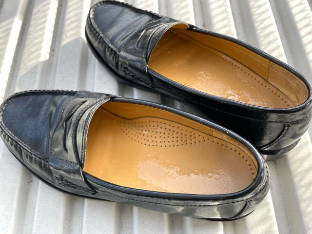 protect-mold-wet-shoes-17
