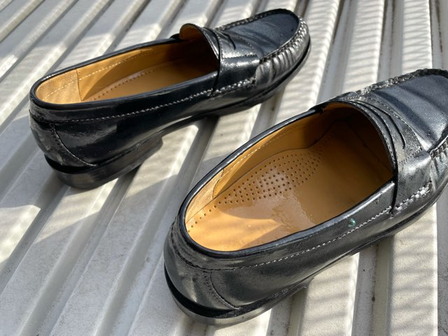 protect-mold-wet-shoes-19