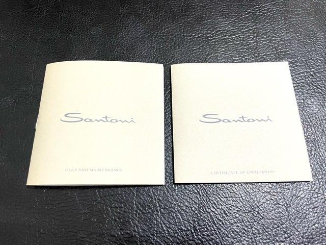 santoni-double-monk-8
